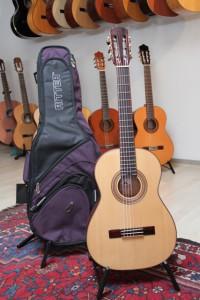 Gitarre und Futteral