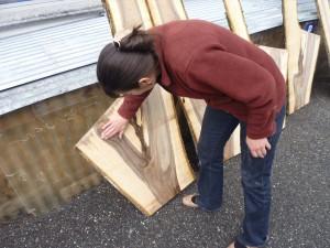 Cecilia begutachtet Holz